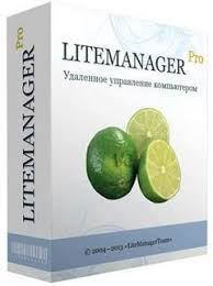 LiteManager Windows